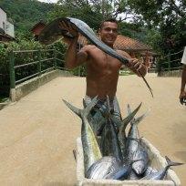 Storlzer Fischer mit frischer Dorado