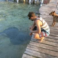 Dani und seine Haustiere