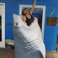 Aaaaaaaa ein Hai!