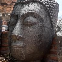 Buddhakopf in Ayutthaya