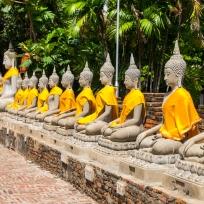 Einige Buddhas in Ayutthaya