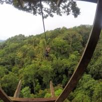 Fränzi zippt hoch über den Bäumen