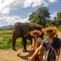 Auf dem Rückweg vom Elefanten Bad