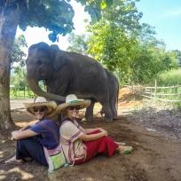 Happy Elephant mit Happy Fränzi und Dani