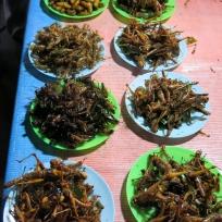 Feiner Apero auf dem Nachtmarkt in Ayutthaya