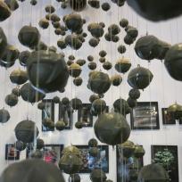 Ausstellung im Cope Museum
