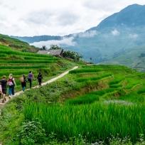 Unsere Gruppe begleitet von Hmong Damen auf dem Weg durch die Reisfelder