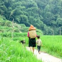 Hmong Frau mit Sohn und Hund auf dem Heimweg